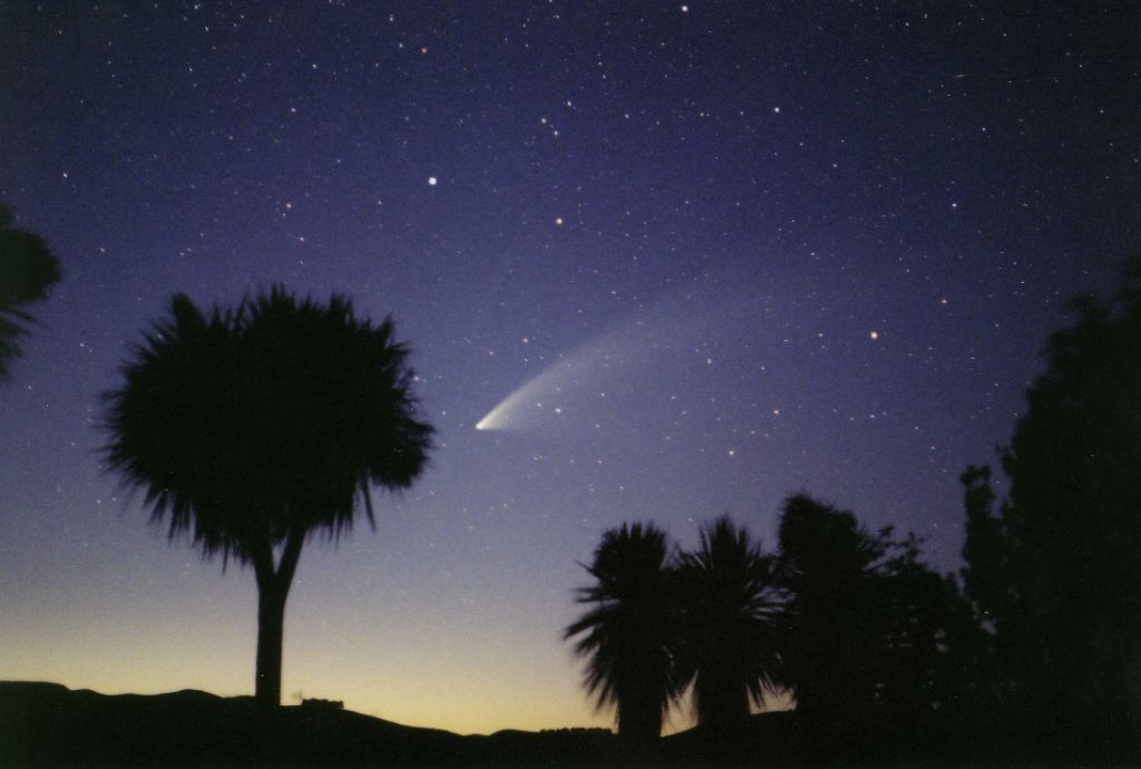 Comet McNaught (2007, pictures www.spaceweather.com)